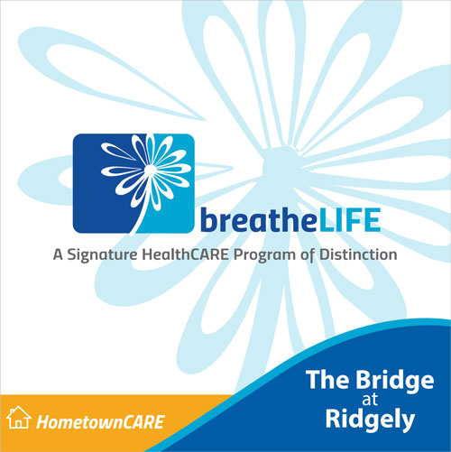 BridgeAtRidgely_BreatheLife_DownloadBrochureImage_500px